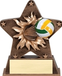 This bronze colored star with gold trim is the latest in ball burst thru awards. Feel the action as the volleyball exits the star. Its sure to make a great impression at your next event. Personalization plate included.